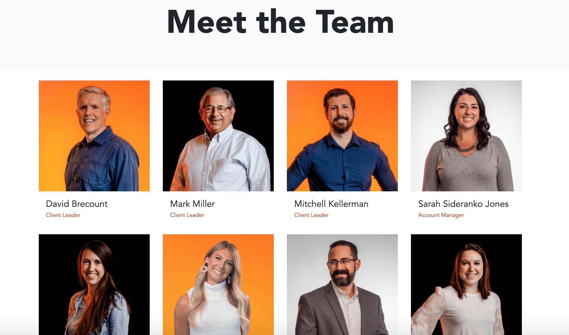 usdp team member page