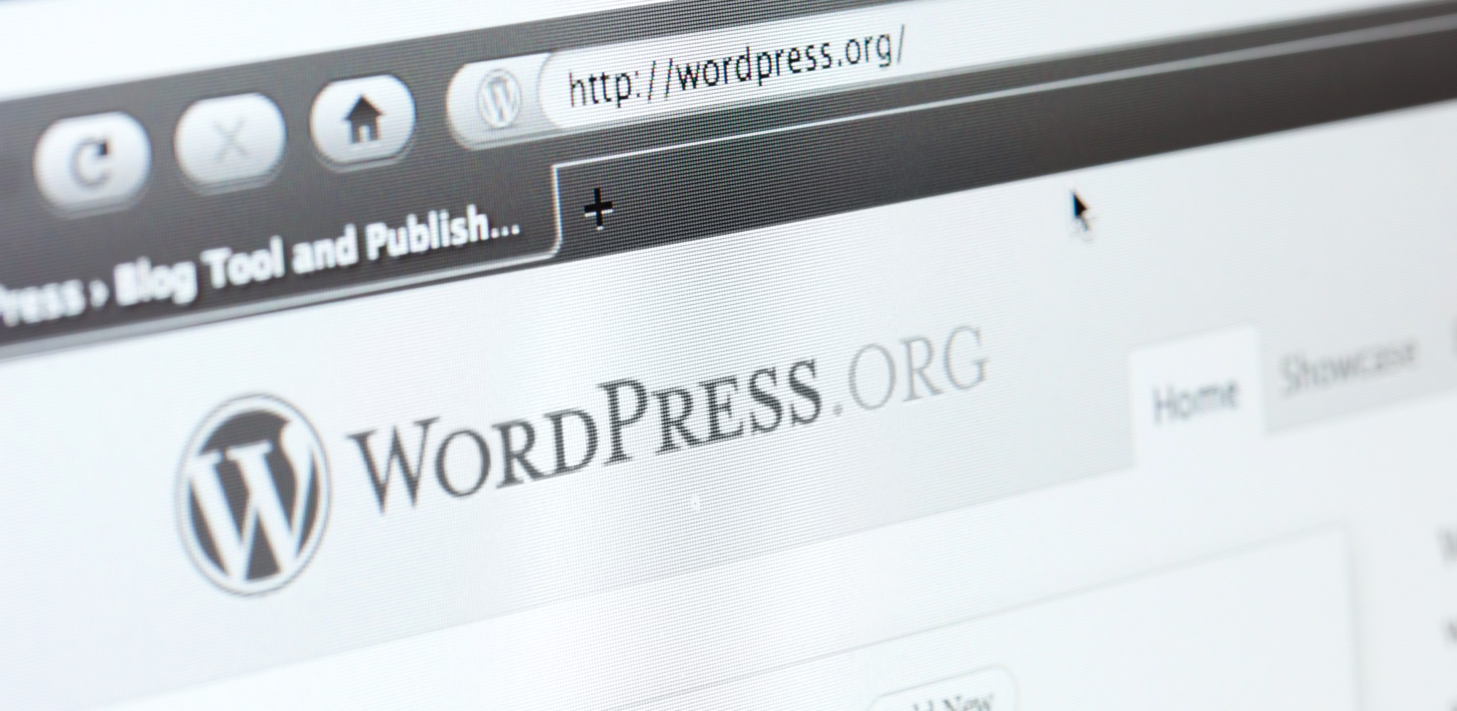 Wordpress Web Page. WordPress is a website that will help you develop a website or blog.